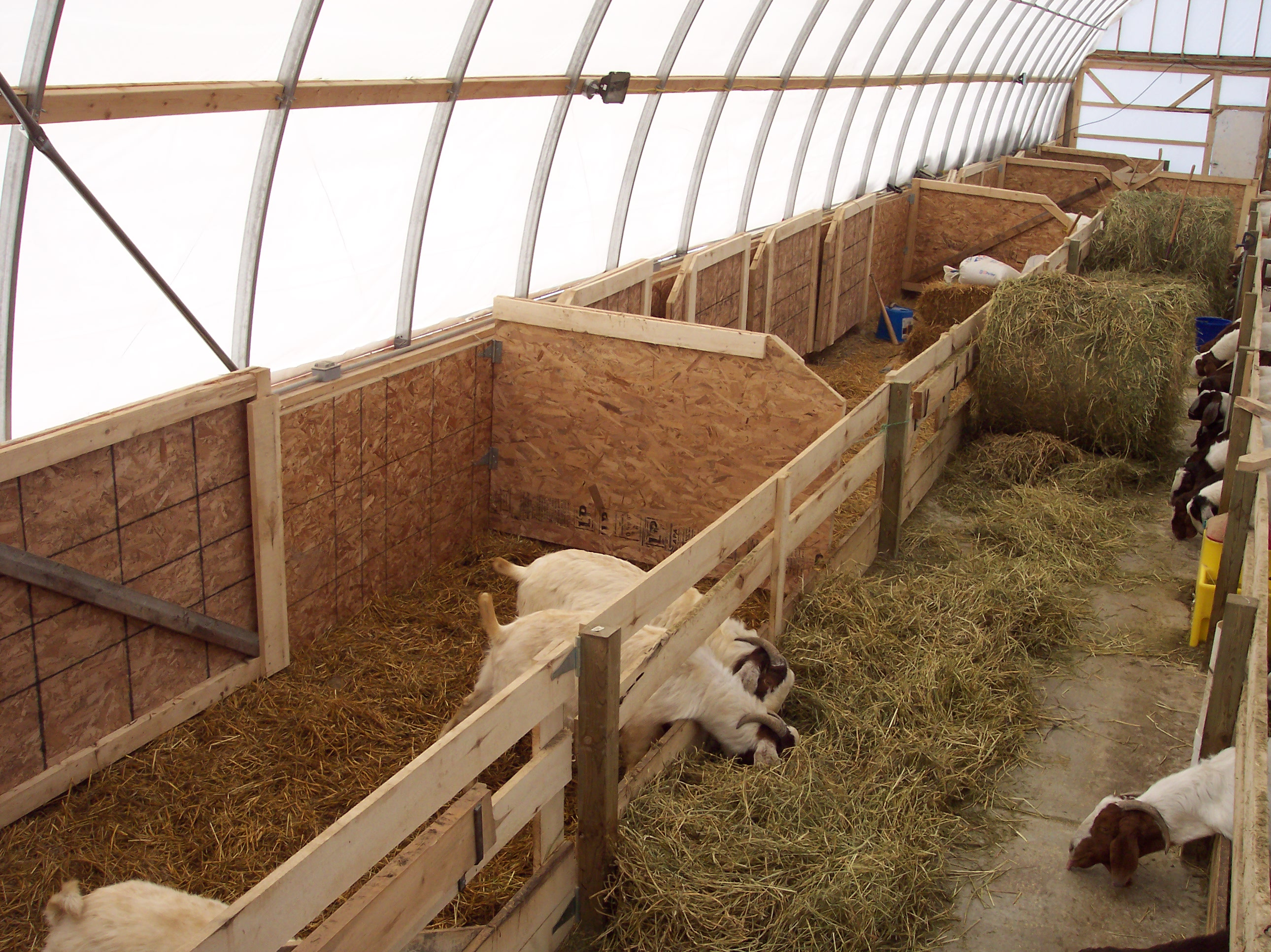 Small Farm Shelters : Livestock shelters multi shelter solutions