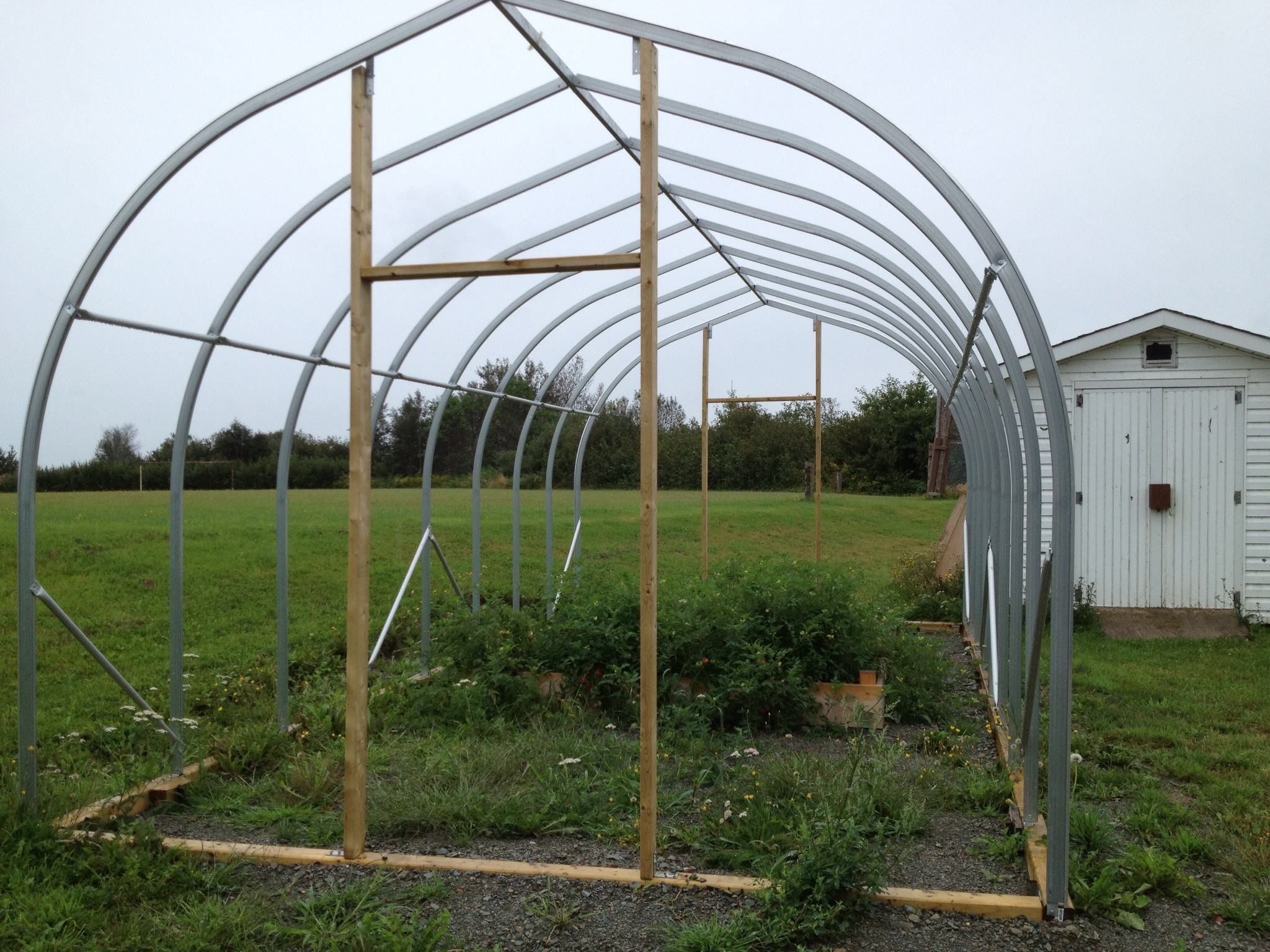 backyard greenhouses multi shelter solutions