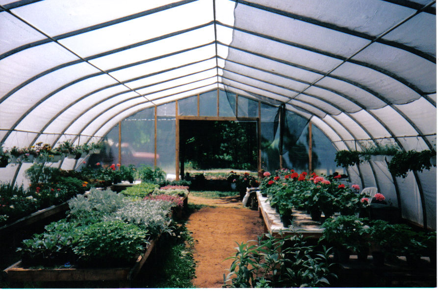 Large Greenhouses Multi Shelter Solutions