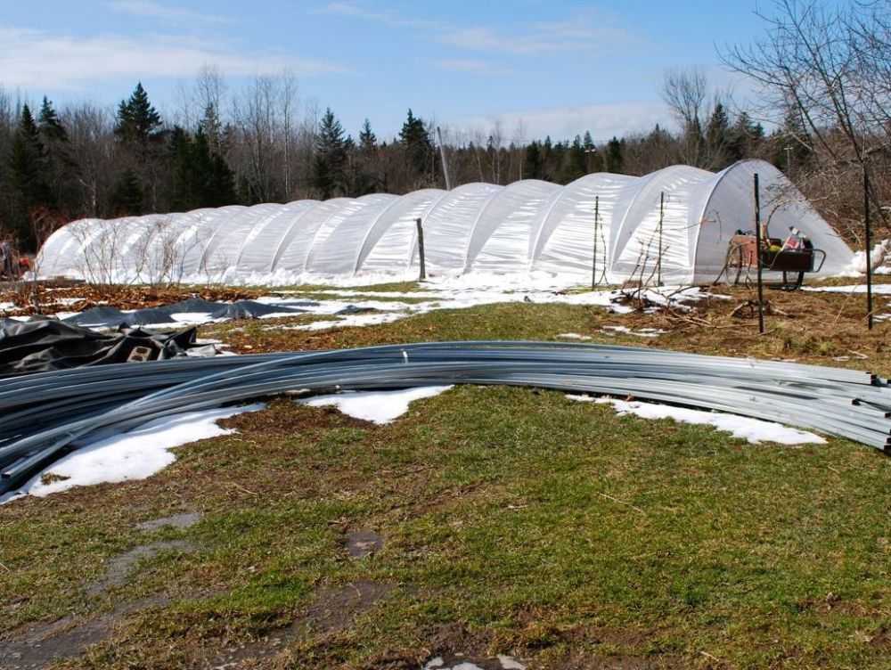 Hanley Caterpillar Greenhouses