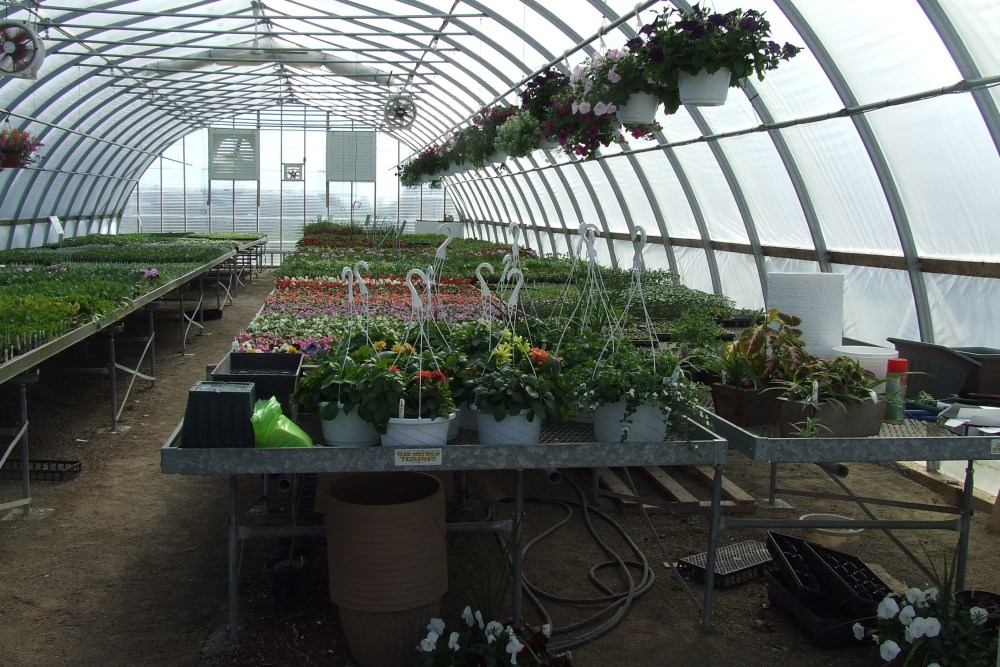 Large Greenhouses (1/4)