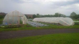 east coast greenhouses