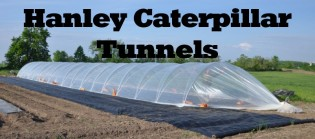 Click for Hanley Tunnel Greenhouse Information
