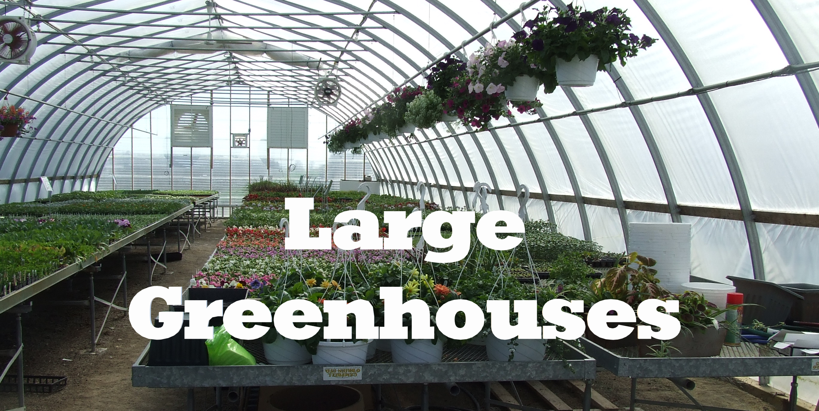 Click for Large Greenhouse Information